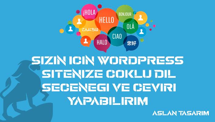 Wordpress sitenize çoklu dil seçeneği ve çeviri yapabilirim