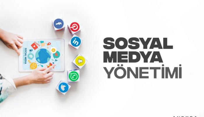 Sosyal Medya Hesaplarını Organik Büyütelim