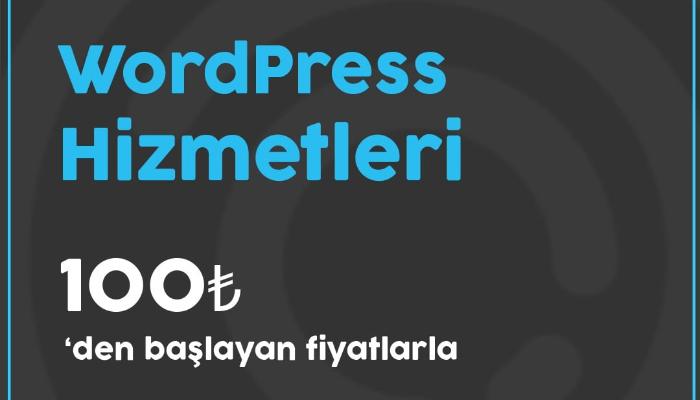 WordPress Siteniz İçin Profesyonel Teknik Destek