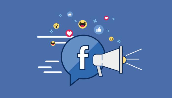 Profesyonel Facebook Reklamları Yönetimi