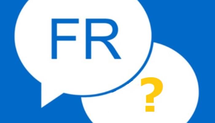 Fransızca-Türkçe çeviri yaparım